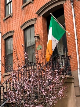Happy St. Patrick's
