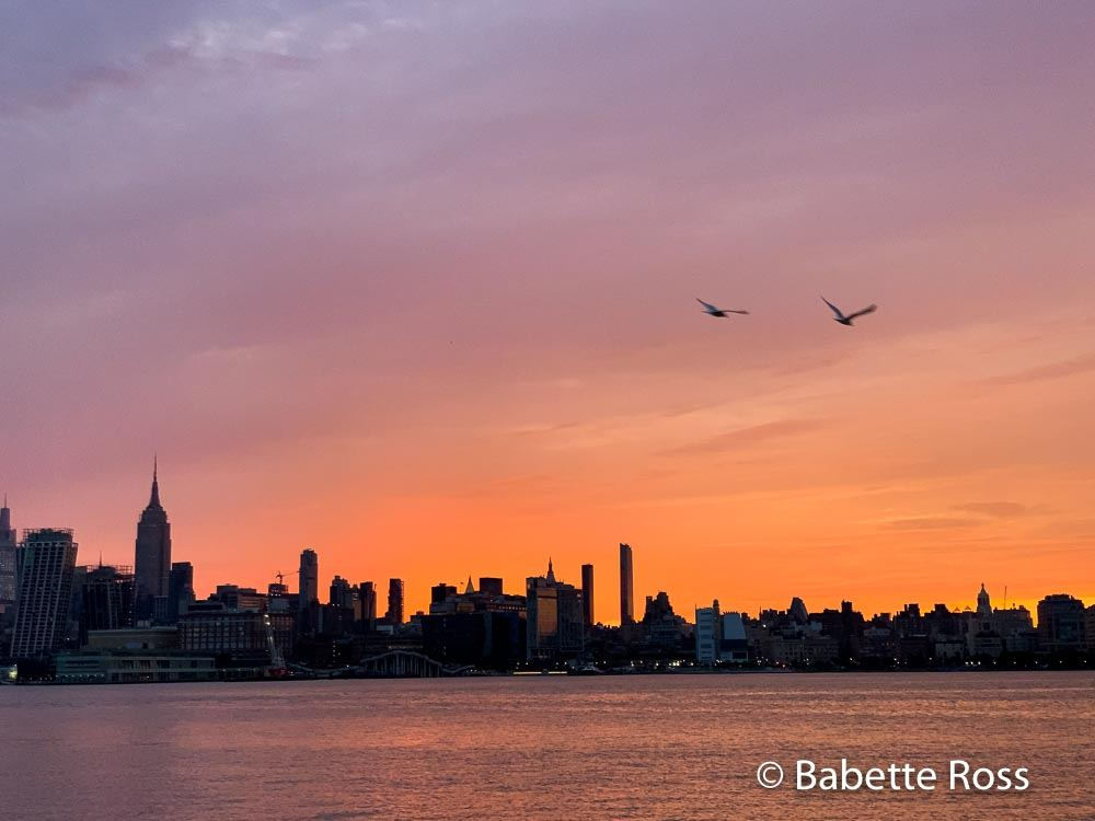 Two Gulls at Sunrise
