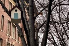 Grove St. Bridhouse