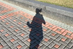 Running with my Shadow