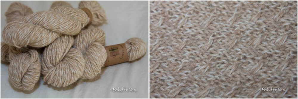 """<a href=""""http://www.ravelry.com/projects/babetter/shifting-sands-scarf-2"""">Scarf</a>"""