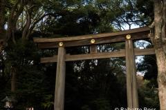 Yoyogi Park, First Torii gate