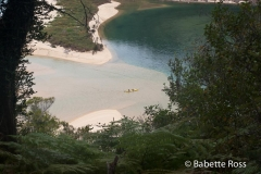 Hiking Torrent Bay to Bark Bay
