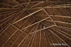 Inside a Yagua Hut