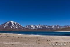 Miscanti Lagoon