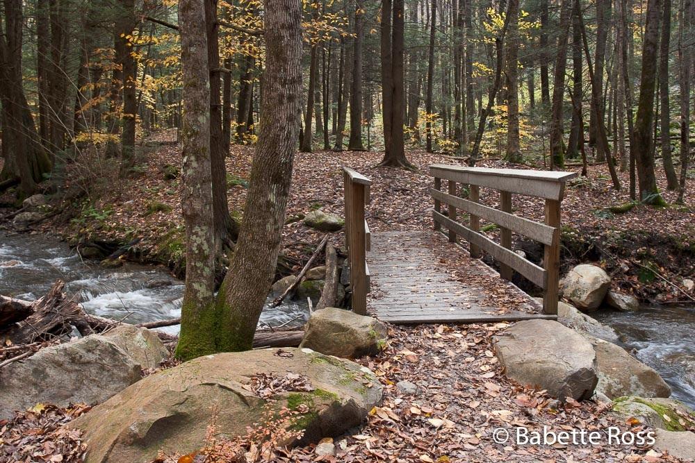 Cascades Falls Park