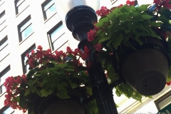 Flowered Lamppost