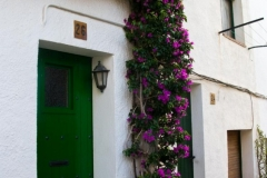Green Door, Pink Flowers