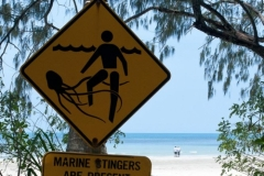 Daintree - Myall Beach - Stick Figure In Peril