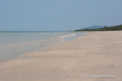 Daintree - Myall Beach