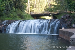 Atherton Tablelands -,Malanda Falls