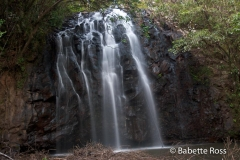 Atherton Tablelands -, Elinjaa Falls