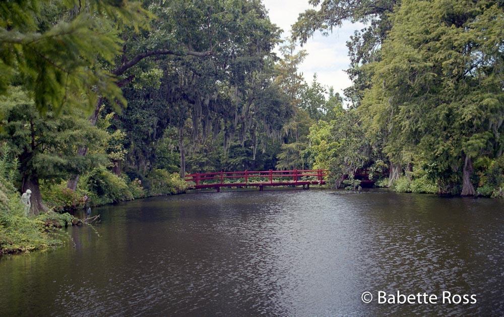Magnolia Swamp Garden