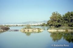 Ile St Margaurite 1997-09-17