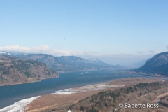Columbia Gorge Overlook