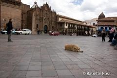 Plaza de Armas Pup