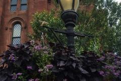 Smithsonian Castle Gardens
