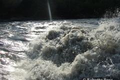 Nenana River