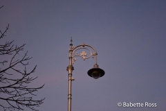 Street Light 2007-12-30