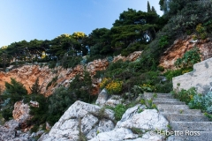 Park Gradac, Dubrovnik 2013-03-17