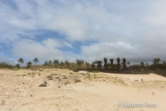 Ahu Nau Nau, Anakena Beach