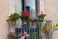 Balcony Full of Flowers