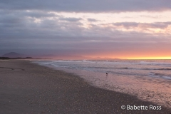 Haast Beach Sunset