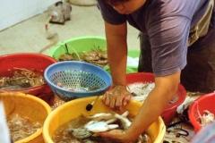 Wet Market, Peng Chau 1999-09-25