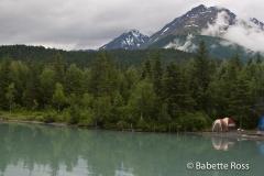 Alaskan Railroad, Coastal Classic