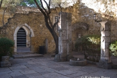 20101004_089