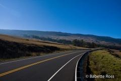 Biking Haleakala