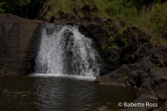 2Road to Hana - Waimoku Falls Hike