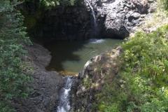 Road to Hana - Waimoku Falls Hike