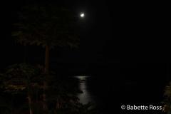 Moon Over Lahaina