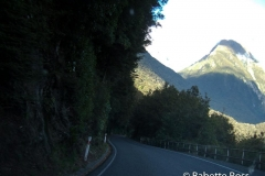 between Te Anu & MIlford Sound