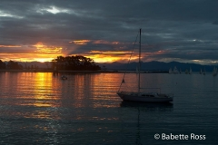Sunset at Boat Shed Cafe, Nelson