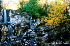 McIntyre Stream Falls