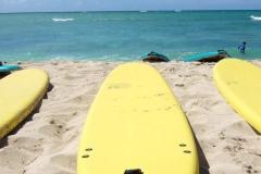 Hawaiian Fire Surf Lesson
