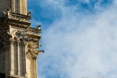 Notre Dame 2015-11-13