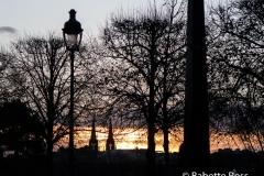 Tuileries Garden 2015-11-13