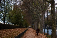 Quai d'Orsay 2015-11-14
