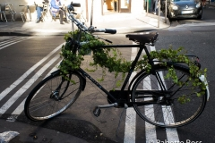 Vine Covered Bike 2015-11-15