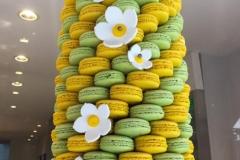 Macarons Croissant 2018-09-09