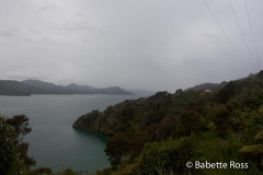 Pelorus Sound, Picton, Queen Charlotte Drive