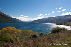 between TeAnu & Queenstown