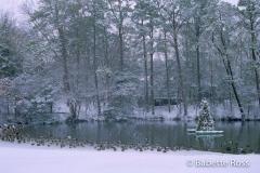 Gerar Lake