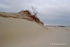Cape Henlopen, Herring Point