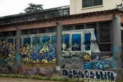 Parque Quinta Normal Street Art