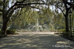 Forsythe Park, Fountain