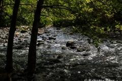 Templeton Trail